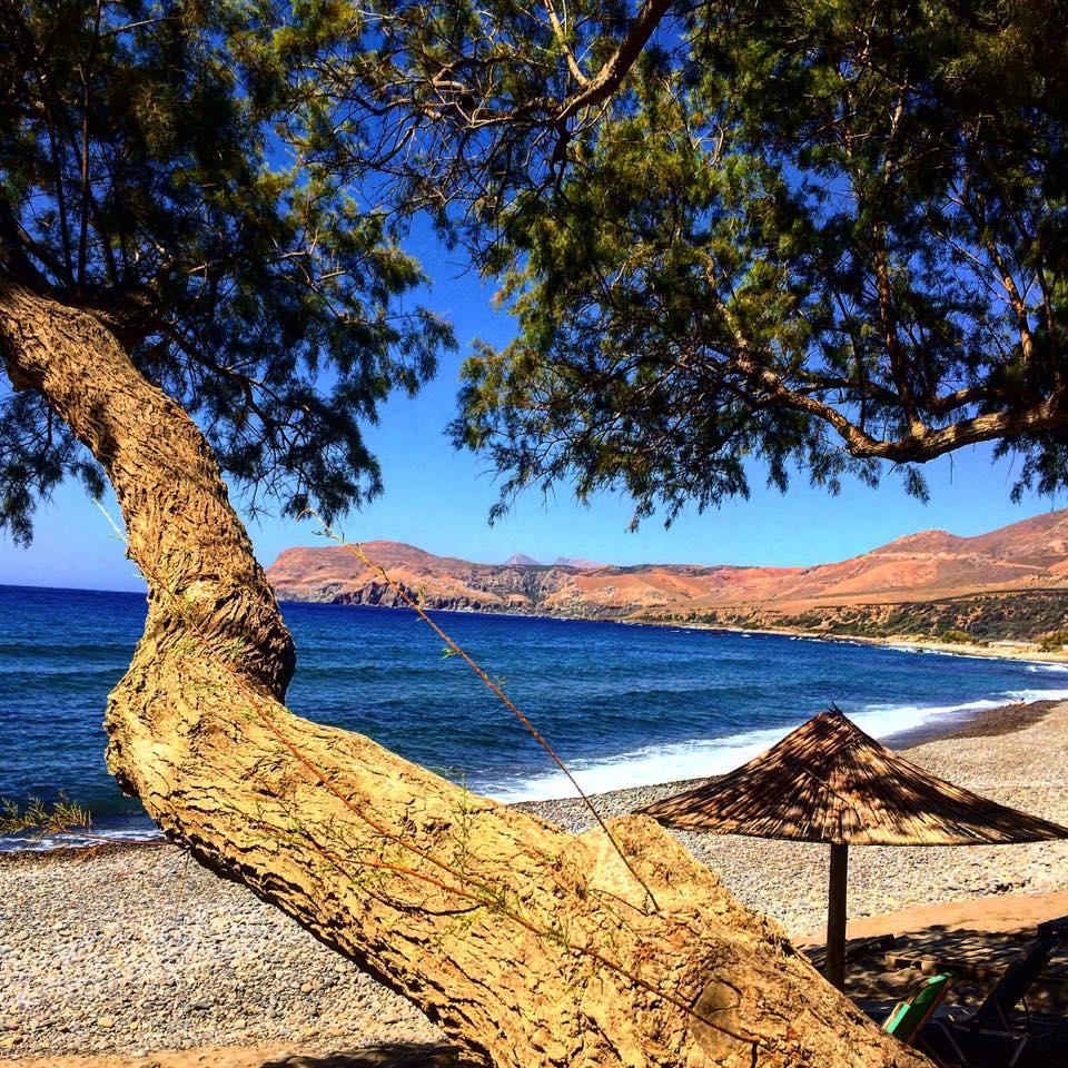 Beaches post
